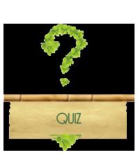 Sección Quiz